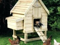 small chicken coop ideas